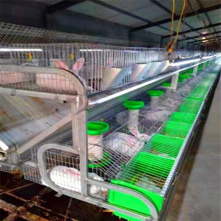 宠物兔笼价格_厂家直销长毛兔笼商品兔笼加粗加密12位兔子笼,长毛兔笼 - 全球 ...