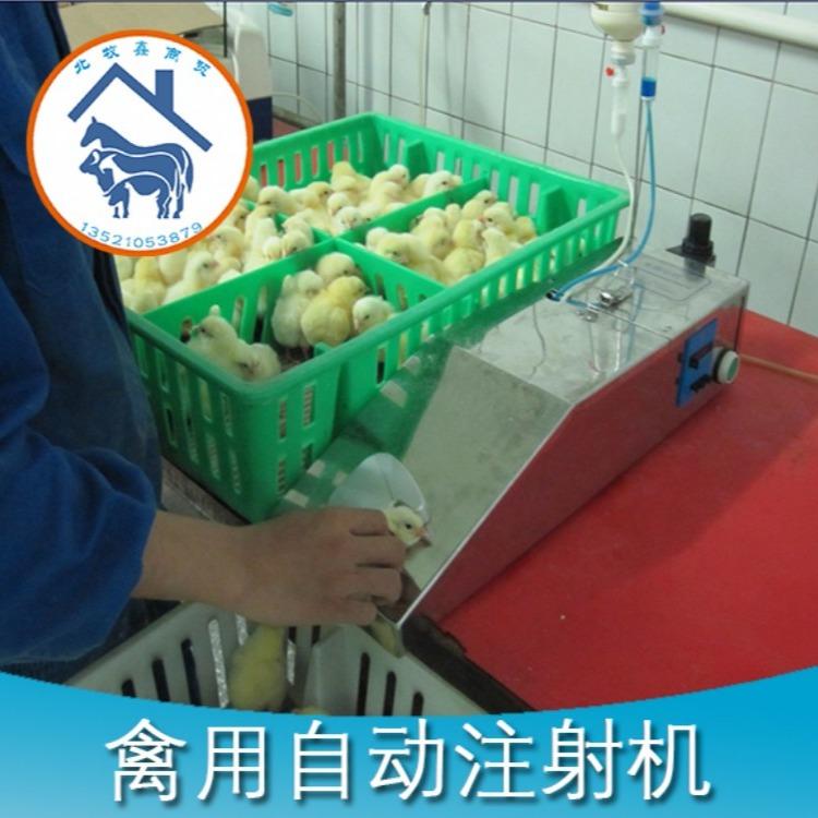 供应鸡苗打疫苗机,鸭苗打疫苗机器,鹅苗打疫苗机器