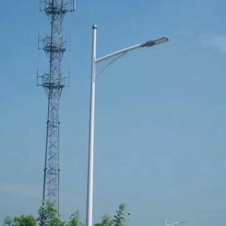 销售路灯生产加工灯杆