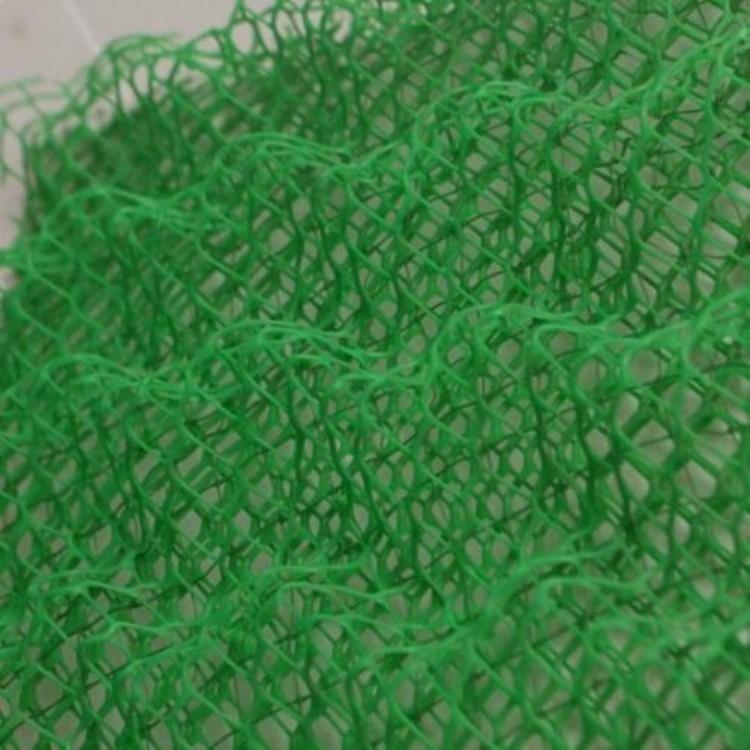 三维植被网_中齐大量生产三维植被网垫边坡绿化网 现货长期供应全国发货