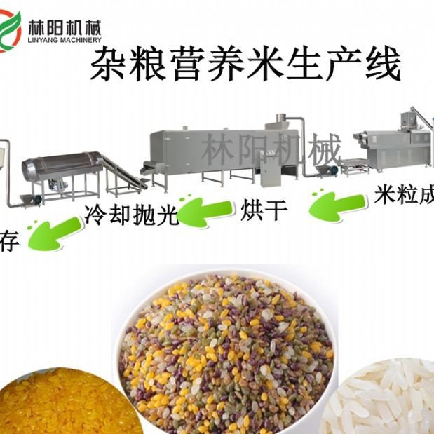 营养米、杂粮米生产线 林阳机械双螺杆膨化机生产