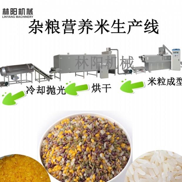 杂粮营养米生产线  营养米设备