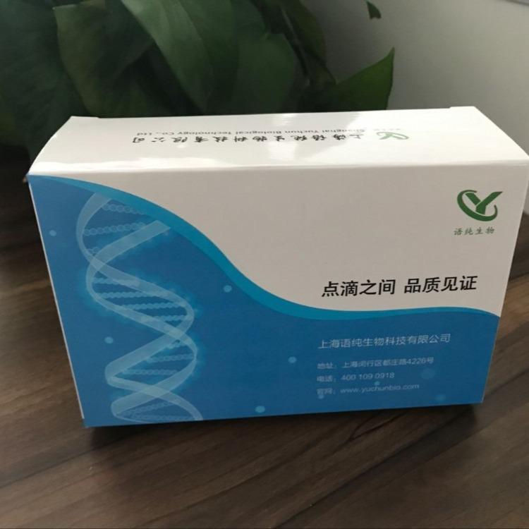 纤维素酶试剂盒(羧甲基纤维素酶)