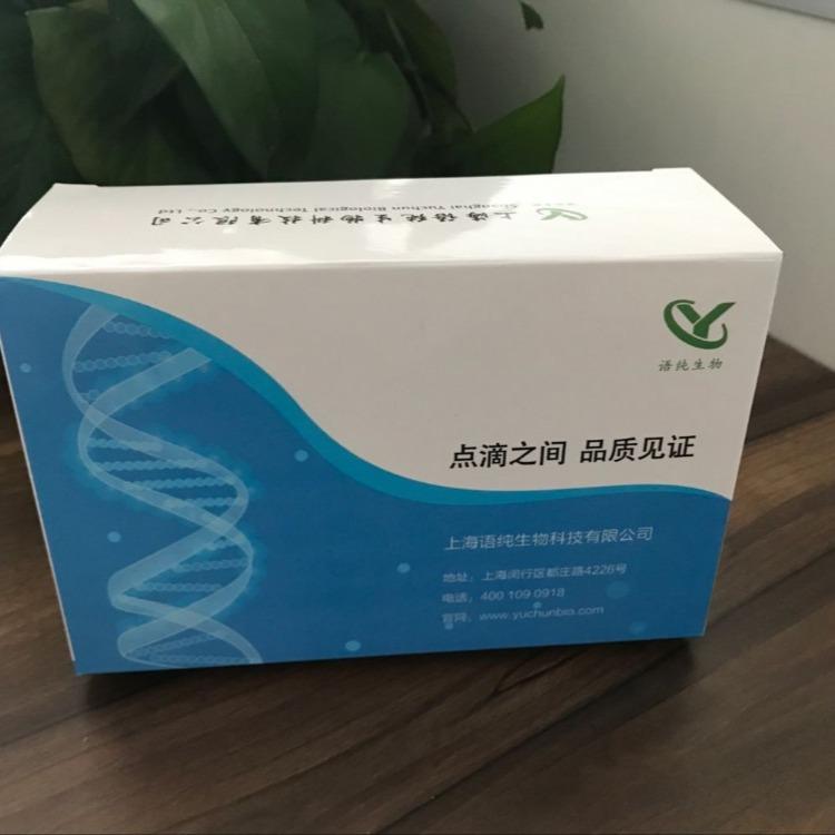 CRISPER 酶,CRISPER 酶价格