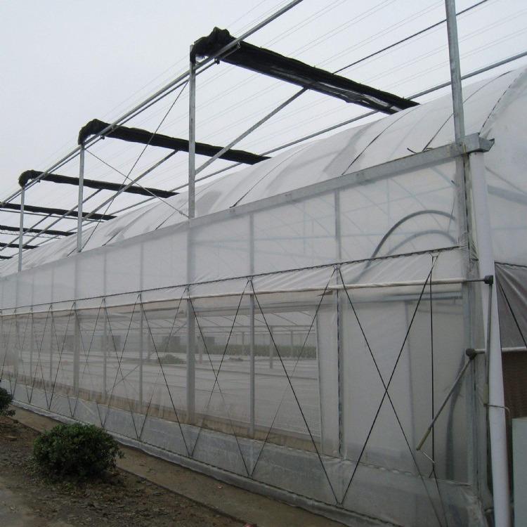 厂家直销玻璃温室大棚 食用菌大棚 塑料大棚建造  各种款式大棚定制