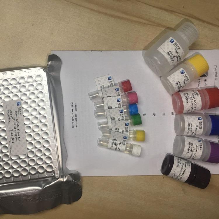 整合素A5(ITGA5)ELISA试剂盒