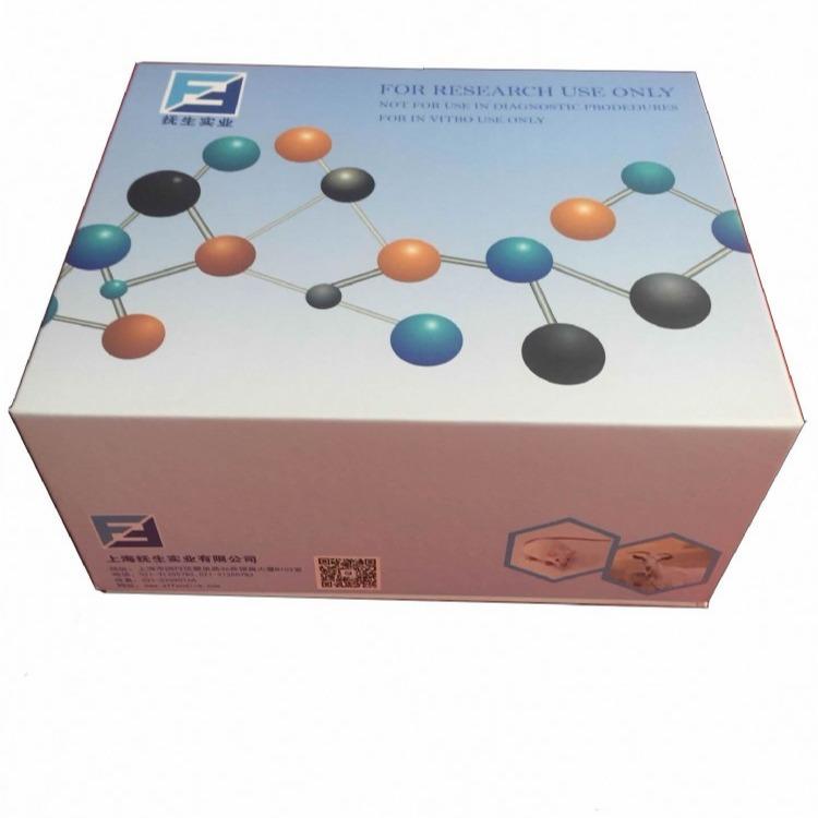 超敏热休克蛋白60(HSP-60)ELISA试剂盒