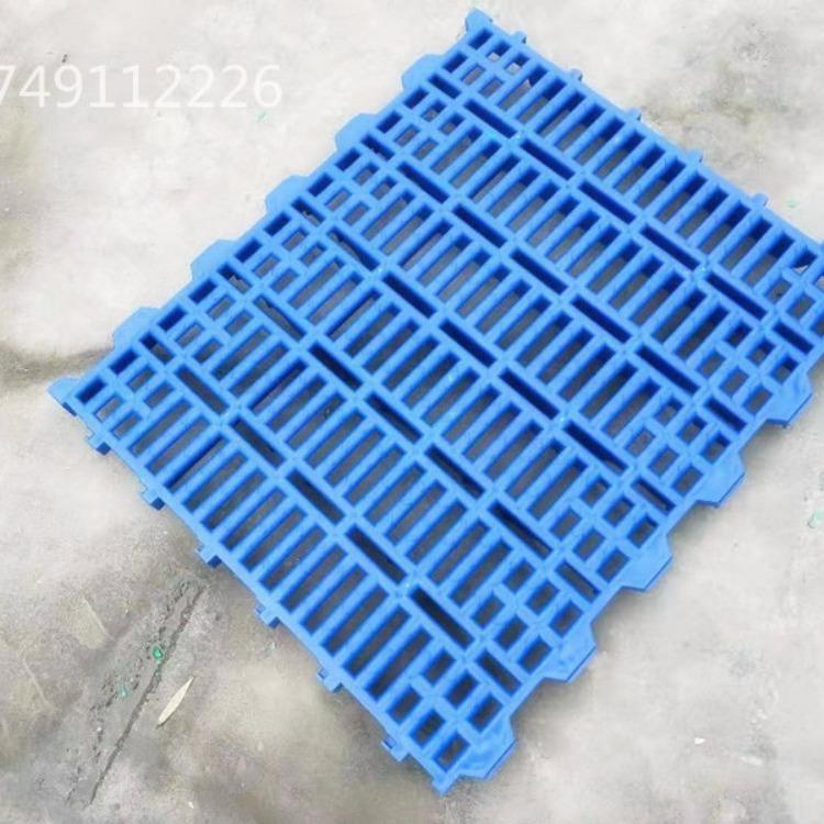60*60塑料漏粪板厂家供应猪用
