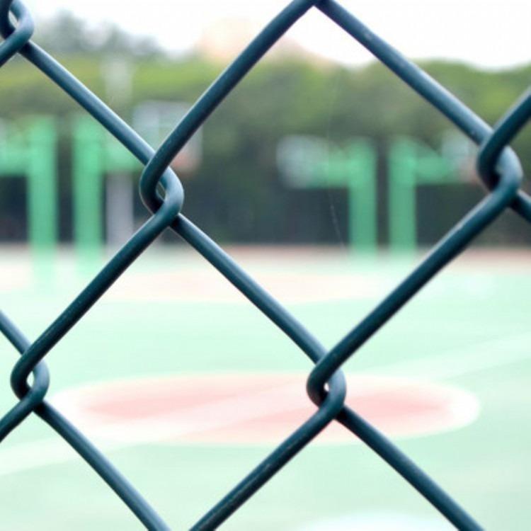 康格丝网公路桥梁防抛网养殖场池塘隔离网圈地围栏网 绿色浸塑铁丝网