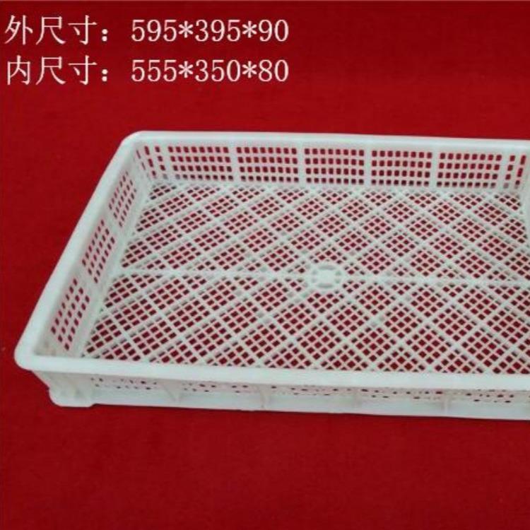 福建冷冻盘批发价格 大眼冷冻盘价格便宜 塑料冷冻盘材质