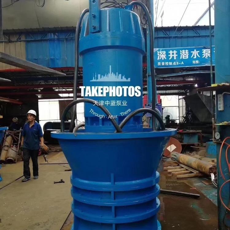大流量潜水轴流泵 高压10KV潜水泵 预支泵站建设