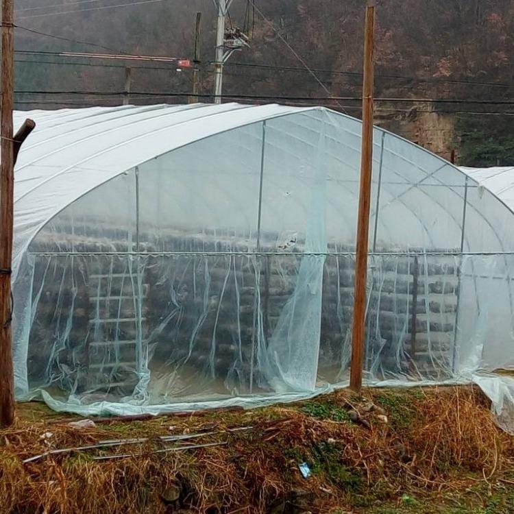 御地温室 大棚钢管销售 草莓大棚 香菇大棚造价 西瓜大棚管
