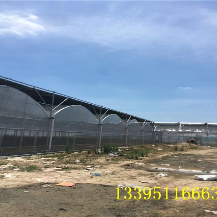 御地温室工程公司直销育苗温室 连体大棚价格优惠 大棚材料价格