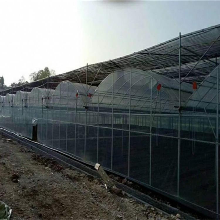 江苏御地温室工程供应养殖大棚价格优惠 农业大棚价格 热销大棚材料