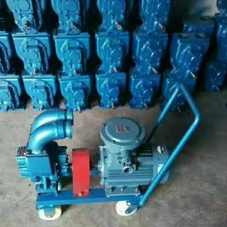 中盛泵业 生产加工齿轮泵 批发kcb齿轮泵 齿轮泵小型 高压电动齿轮泵 大流量齿轮泵
