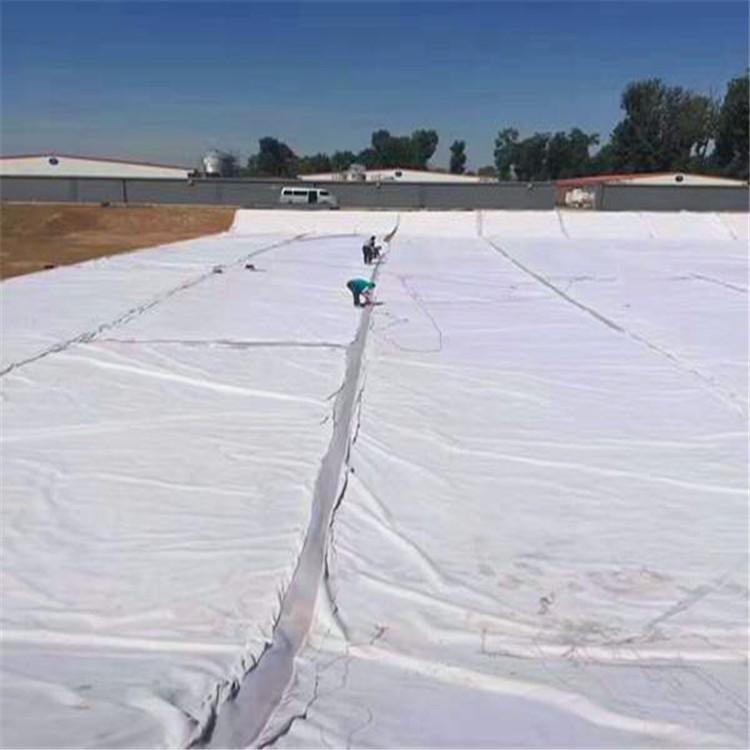 开封市―反滤土工布600g长丝土工布-(生产商)