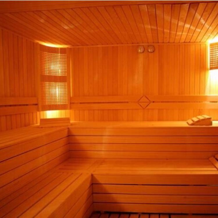 惠州订做桑拿房10平方桑拿房室艺路发公司节能省电