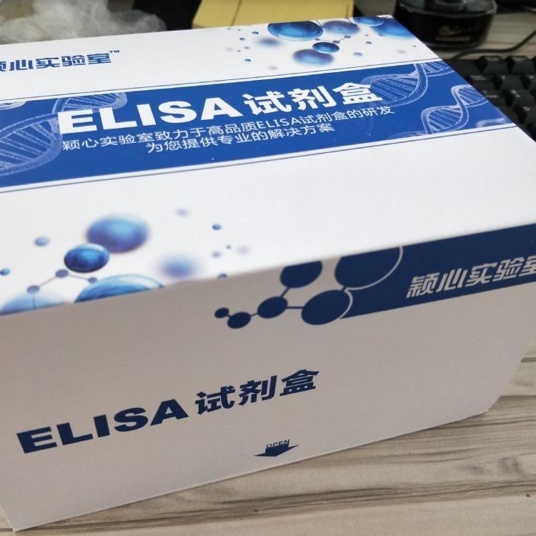 小鼠热休克蛋白60(Hsp-60)Elisa试剂盒