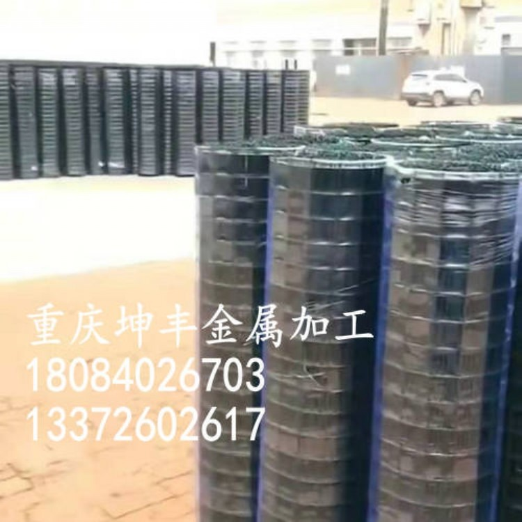 重庆坤丰金属护栏网 鸡笼网养殖网 种植林网 荷兰网 厂价