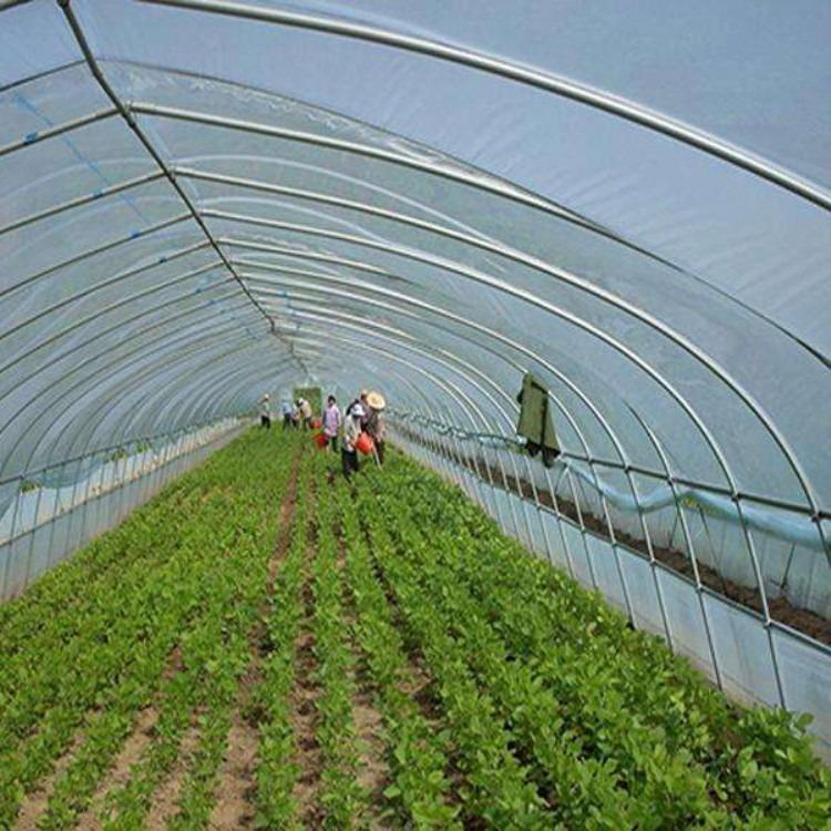 厂家专业搭建蔬菜大棚 温室大棚 建源温室