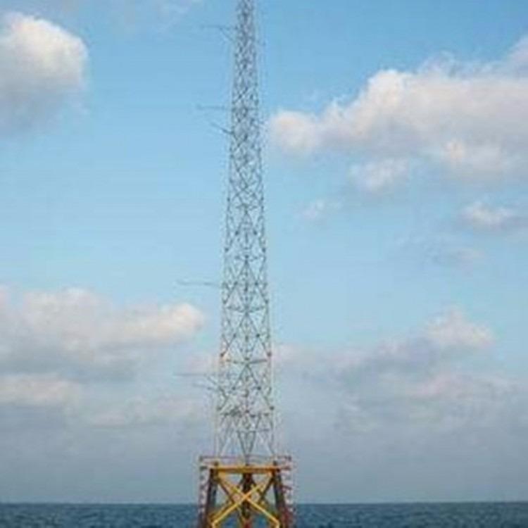 富航 优质避雷塔 品质保证 质优价廉