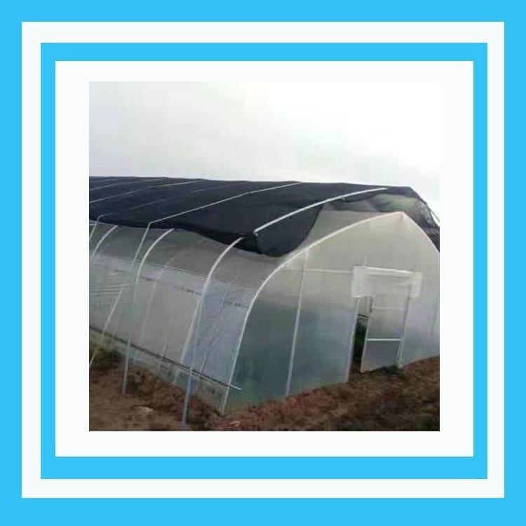 河南养猪大棚管 绿色养殖大棚 养猪大棚一平方价格