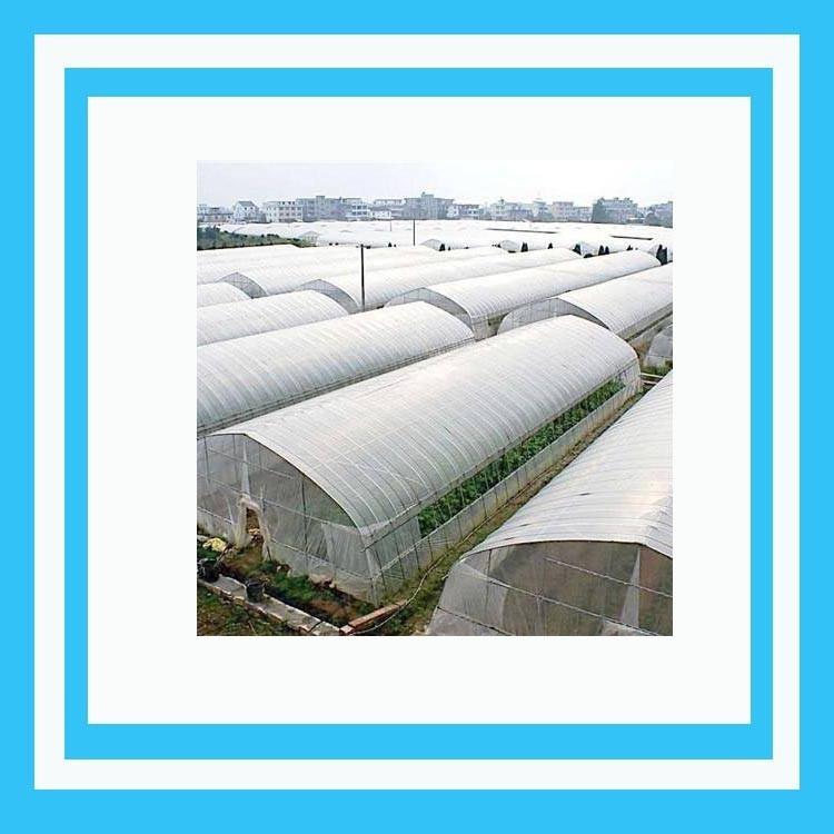 厂家直销连栋温室大棚 简易连栋大棚 玻璃连栋大棚 连栋温室大棚