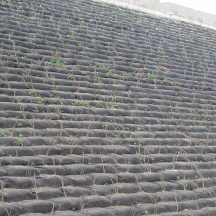 加厚装草籽生态袋 堤岸施工护坡生态袋 丙纶长丝生态袋