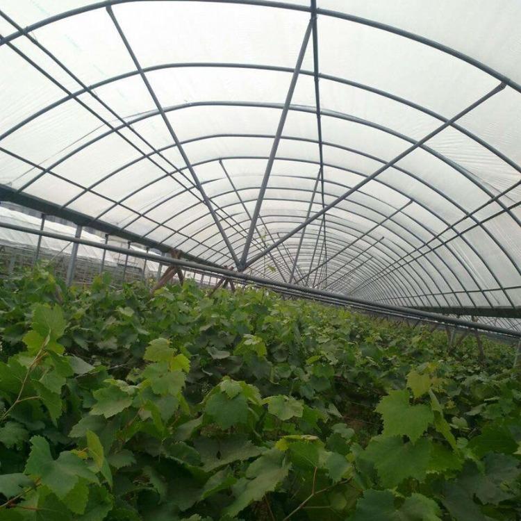 建源温室工厂安装 各种温室大棚工程 蔬菜大棚 质量达标