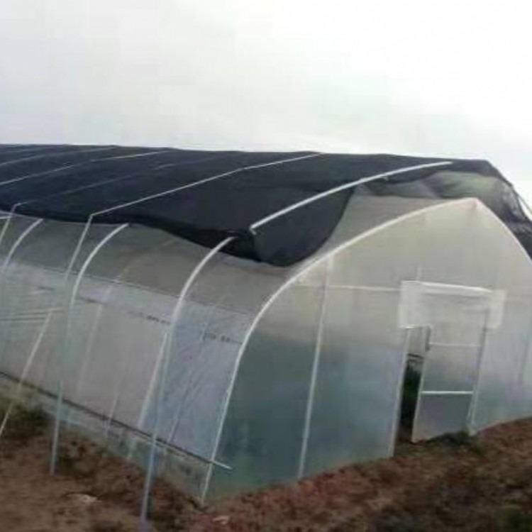 养猪大棚管 绿色养殖大棚 养猪大棚 养鸡大棚 养鸭大棚