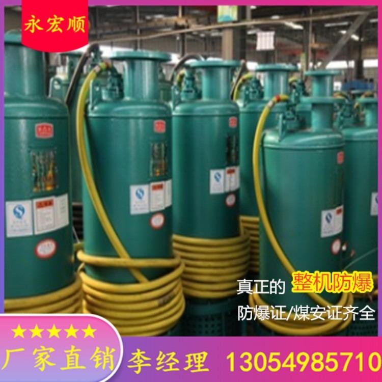 BQS系列矿用隔爆型潜水排沙电泵 BQS60-2554-110N矿用隔爆型潜水泵 矿山抽沙排污潜水电泵 (生产厂家)