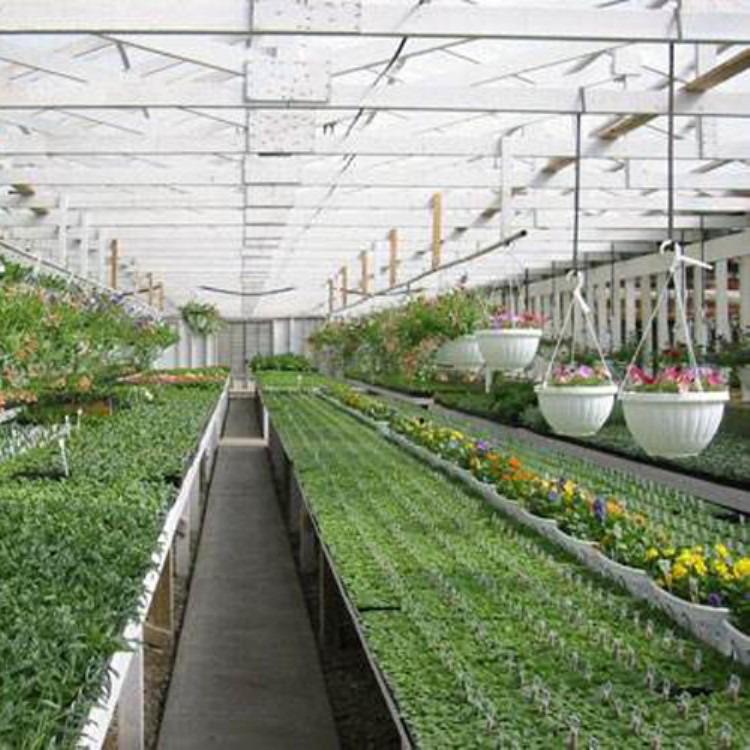 厂家建源温室 各种蔬菜大棚 温室大棚专业测量安装