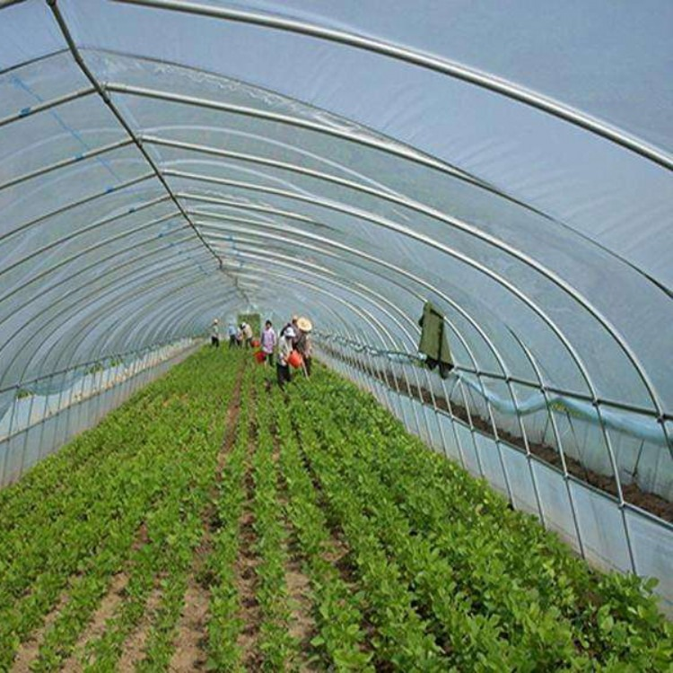 建源温室厂家出售 蔬菜大棚 温室大棚骨架 测量安装温室大棚