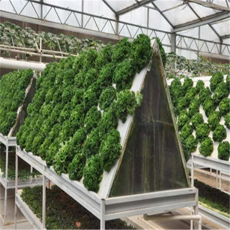 建源温室厂家承接 各种蔬菜大棚 温室大棚工程专业搭建安装上门服务