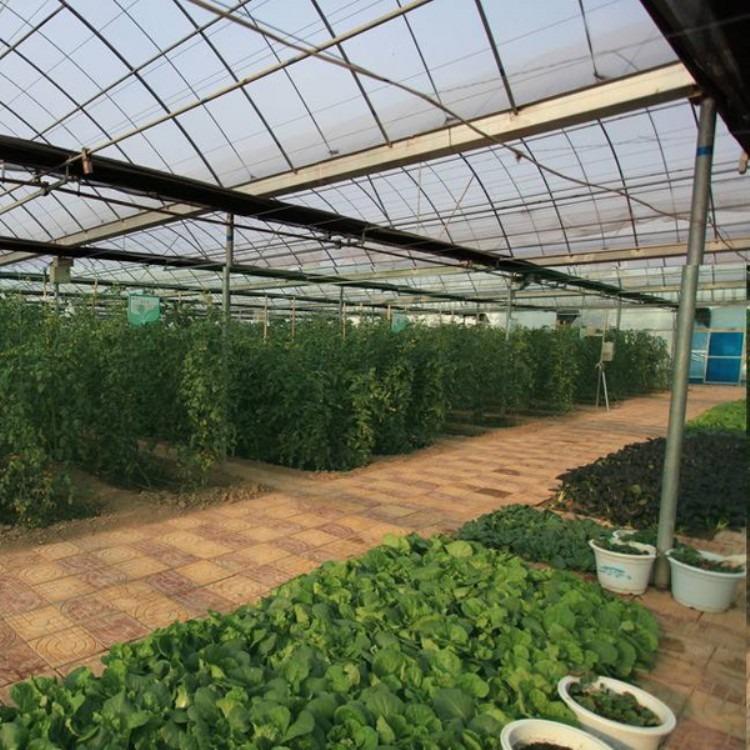 专业搭建蔬菜大棚 温室大棚 建源温室制造专业测量团队