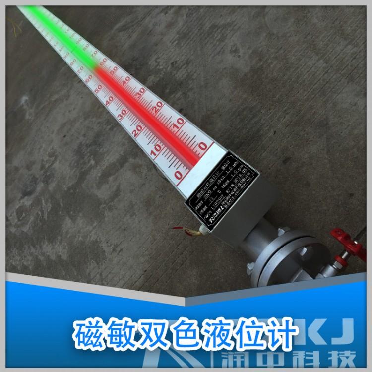 江苏磁性翻柱液位计厂家价格 磁翻板液位计 优质品牌 润中仪表
