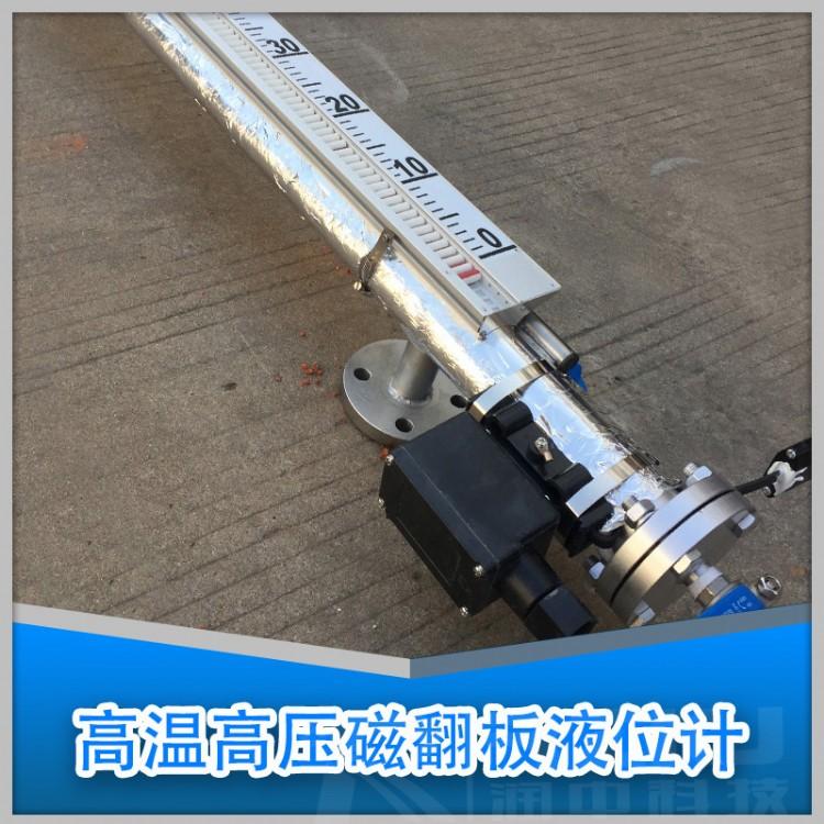上海高压液位计厂家价格 磁翻板液位计 优质品牌 润中仪表