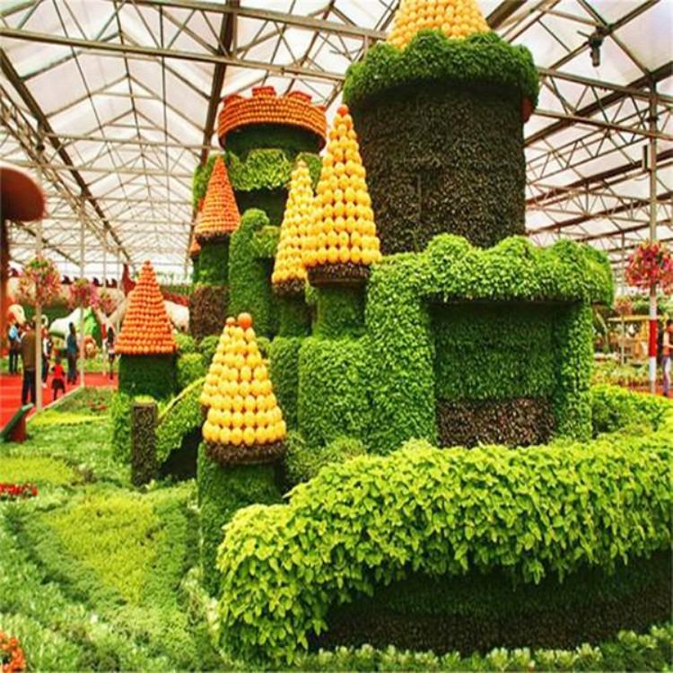 建源温室出品 温室大棚 蔬菜大棚 专业大棚骨架搭建