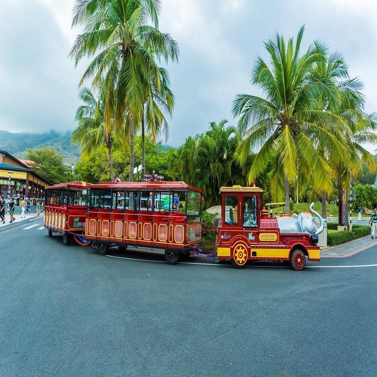景區觀光小火車 軌道小火車 長和游樂長期供應各種類型,各種風格的電動觀光小火車