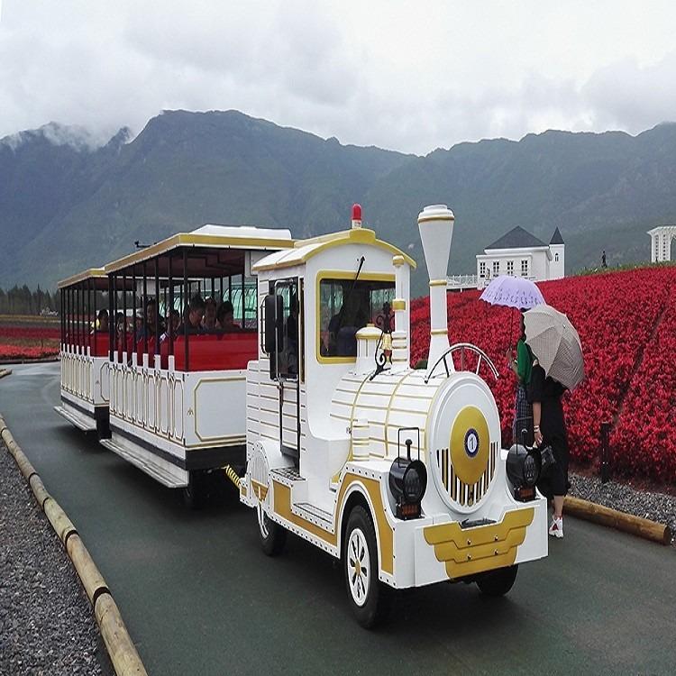 經典白色電動款景區電動款旅游觀光小火車